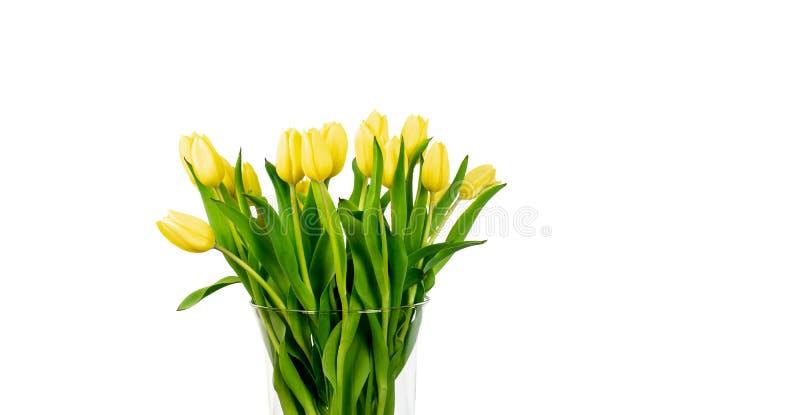Tulipanes amarillos en florero en el fondo blanco foto de archivo