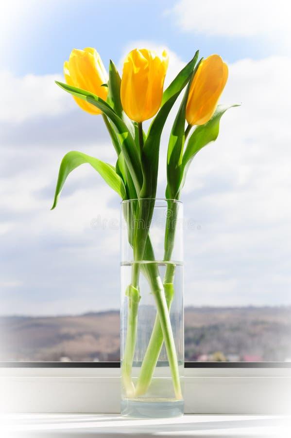 Tulipanes amarillos en florero en travesaño de la ventana fotos de archivo libres de regalías