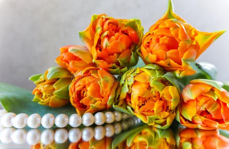 Tulipanes anaranjados hermosos y perlas blancas en el espejo Perfeccione para la tarjeta de felicitación del fondo fotografía de archivo