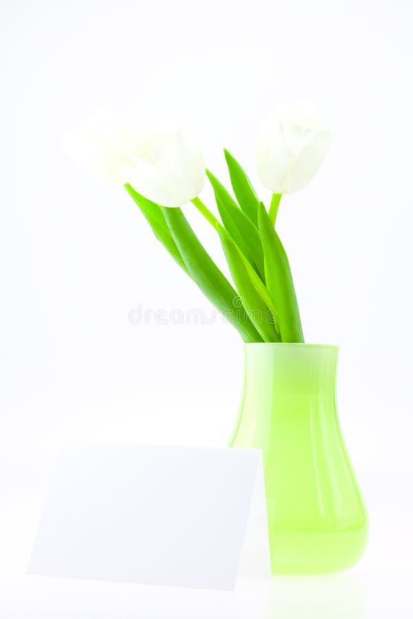 Tulipanes blancos en un florero y una tarjeta aislados en blanco imagenes de archivo