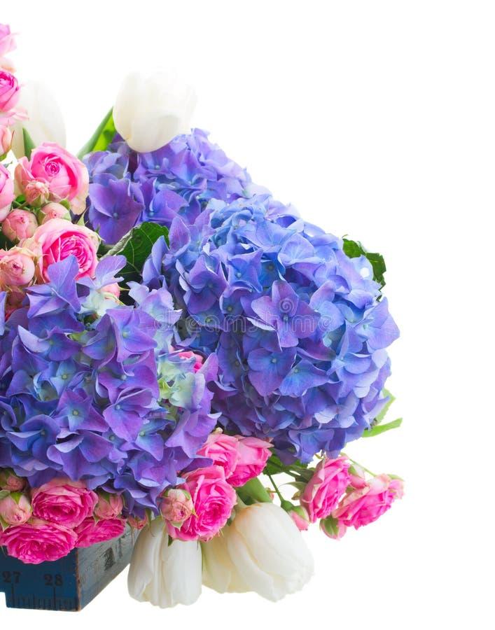 Tulipanes blancos, rosas rosadas y hortensia azul imagen de archivo