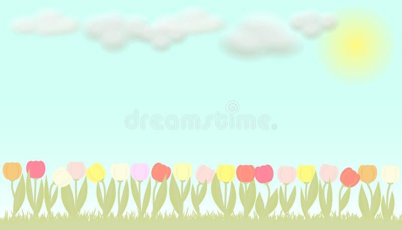 Tulipanes coloridos del vector libre illustration
