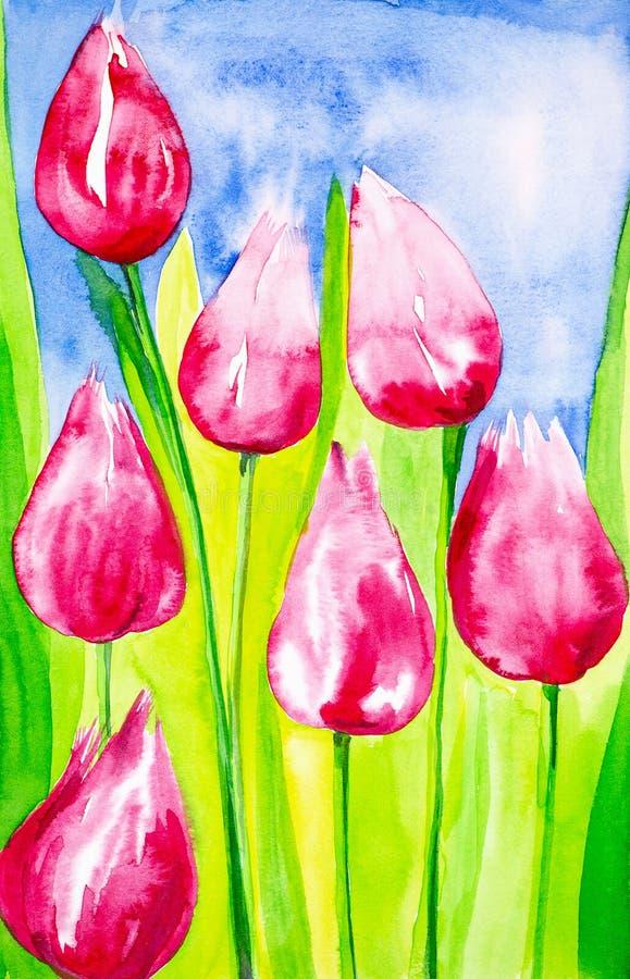 Tulipanes con el primer de las hojas en el campo contra el cielo Ilustración de la acuarela ilustración del vector