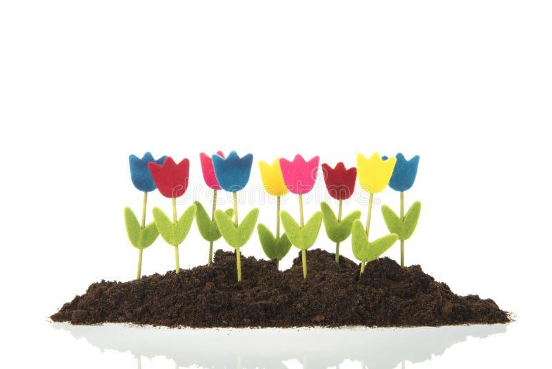 Tulipanes de la fila en jard?n fotografía de archivo