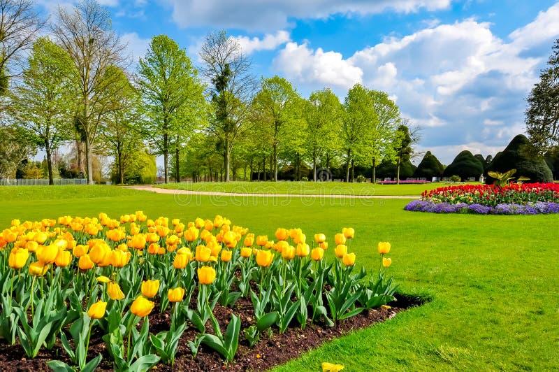 Tulipanes de la primavera en el jardín del Hampton Court, Londres, Reino Unido fotografía de archivo libre de regalías