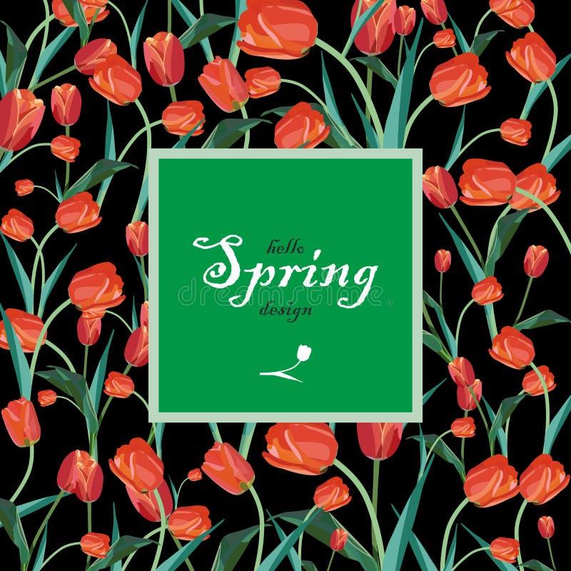 Tulipanes de la primavera roja del marco de texto y lirios blancos del valle imágenes de archivo libres de regalías
