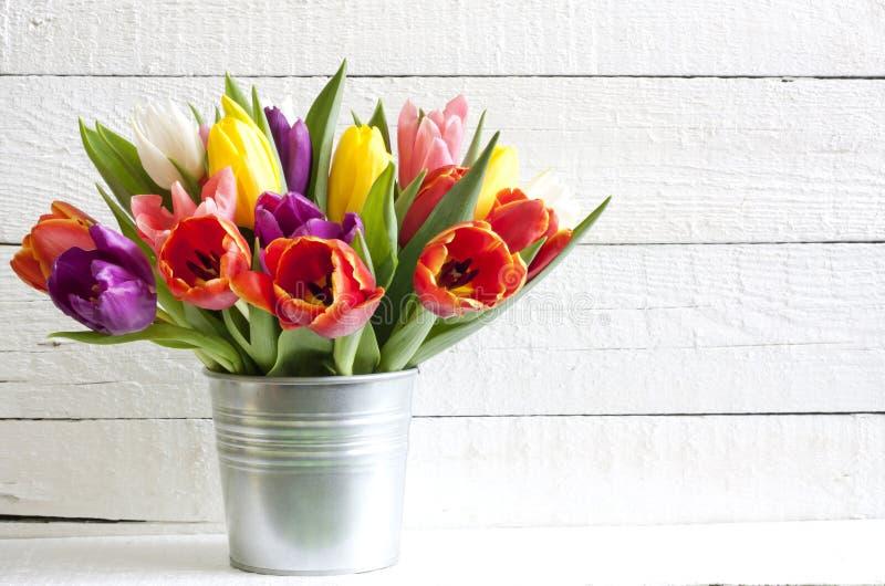 Tulipanes de pascua de la primavera en cubo fotografía de archivo libre de regalías