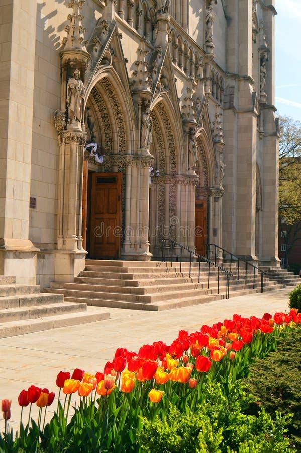 Tulipanes delante de Heinz Chapel foto de archivo libre de regalías