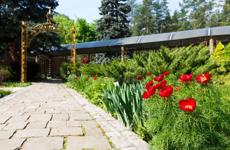 Tulipanes en el jard n dise o del paisaje imagen de for Diseno de paisajes y jardines