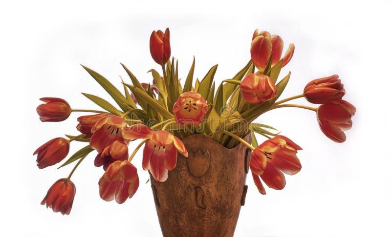 Tulipanes en florero foto de archivo libre de regalías