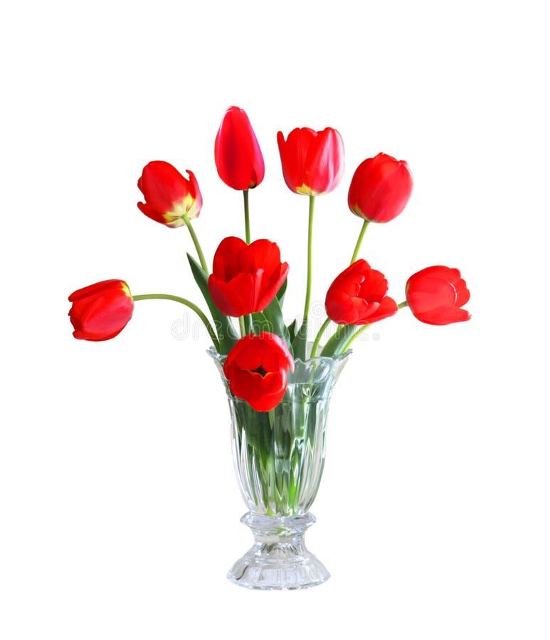 Tulipanes en un florero foto de archivo