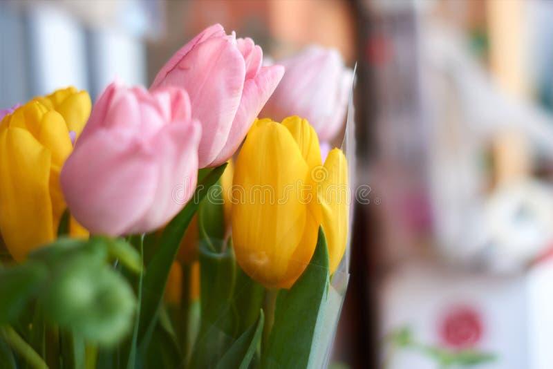 Tulipanes en un fondo neutral Apenas llovido encendido Postal para el día de tarjeta del día de San Valentín, el día de las mujer fotografía de archivo libre de regalías