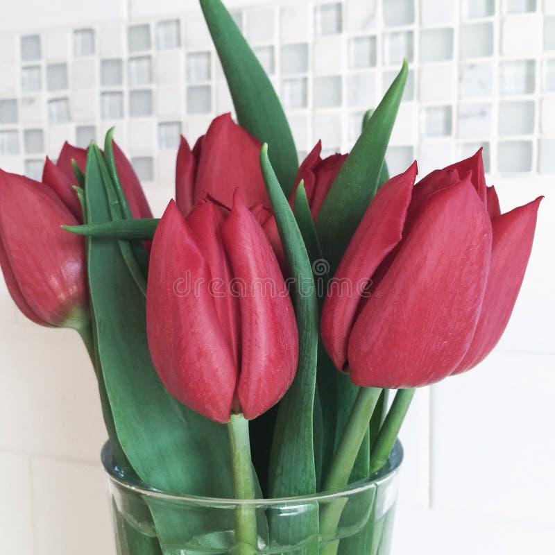 Tulipanes en un vidrio fotos de archivo