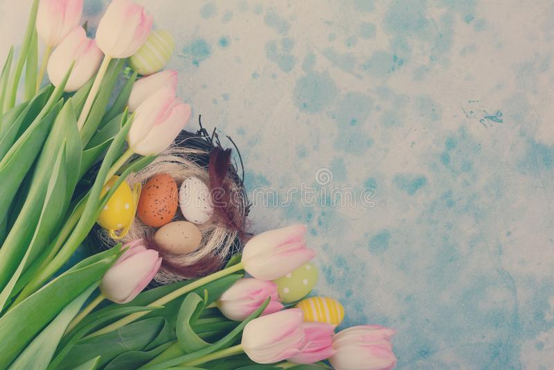 Tulipanes frescos rosados fotos de archivo