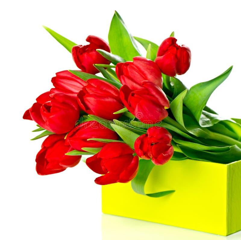 Tulipanes rojos frescos en el rectángulo de regalo verde imágenes de archivo libres de regalías