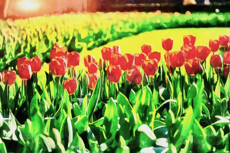 Tulipanes rojos Los trabajos en el estilo de la pintura de la acuarela libre illustration