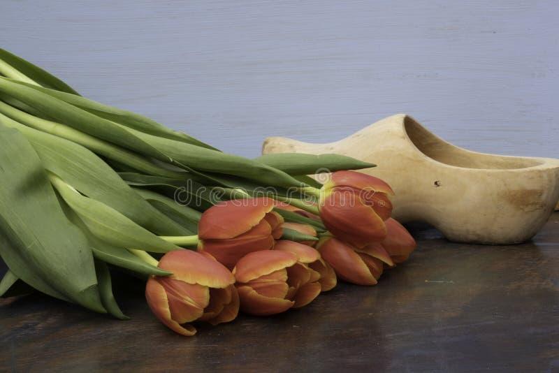 Tulipanes rojos y un estorbo de madera foto de archivo