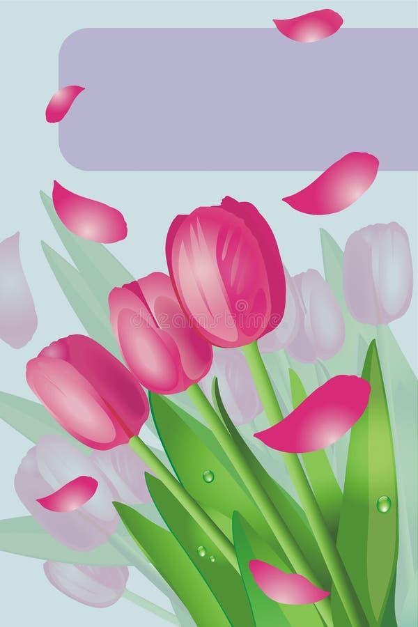 Tulipanes rosados imagenes de archivo