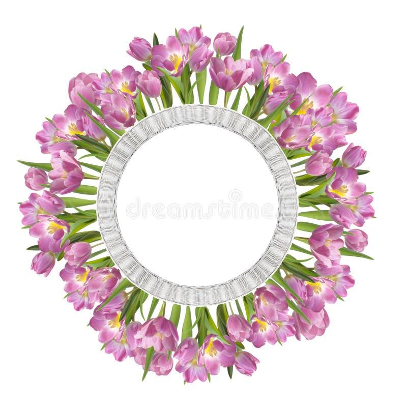 Tulipanes rosados en la cesta blanca imagenes de archivo