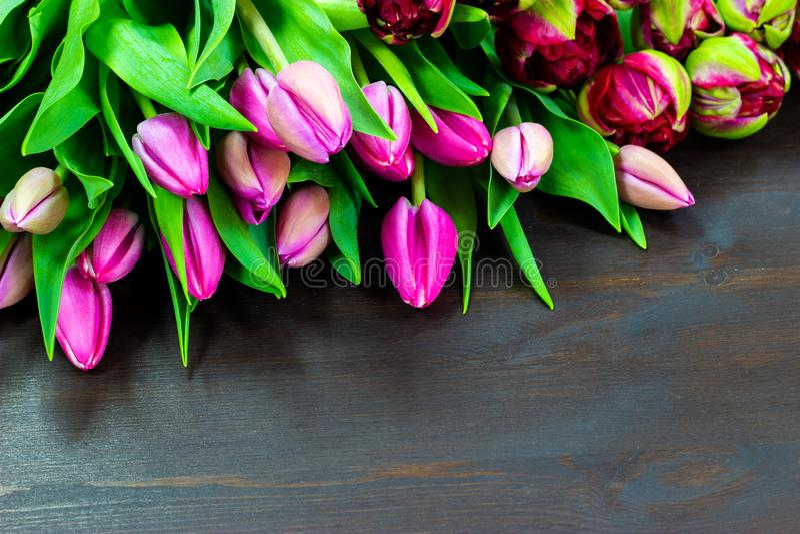 Tulipanes rosados en un espacio libre de la tabla de madera para el texto fotos de archivo libres de regalías