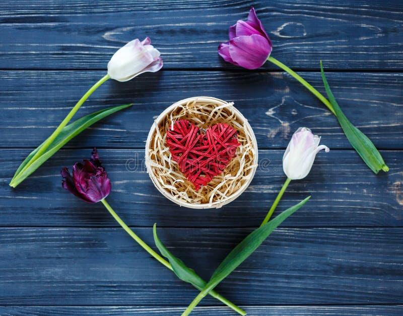 Tulipanes violetas rosados hermosos coloridos y corazón rojo en caja de madera redonda en la tabla de madera gris Tarjetas del dí fotografía de archivo