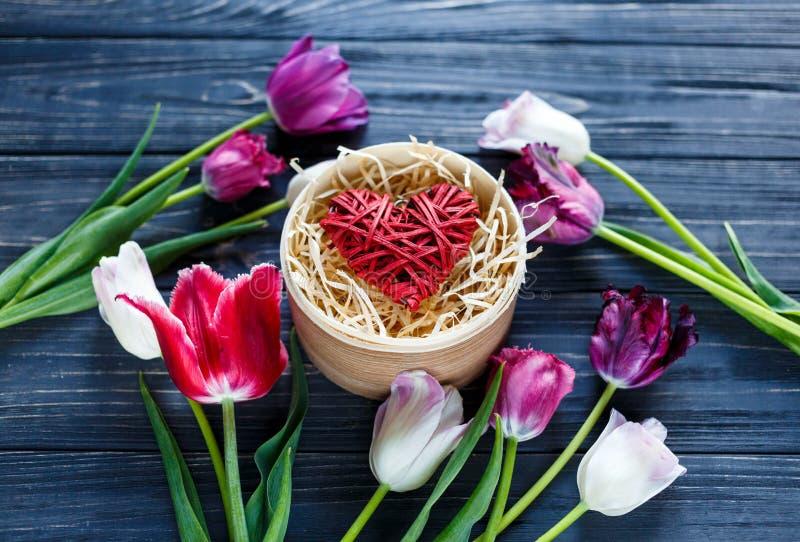 Tulipanes violetas rosados hermosos coloridos y corazón rojo en caja de madera redonda en la tabla de madera gris Tarjetas del dí imagen de archivo