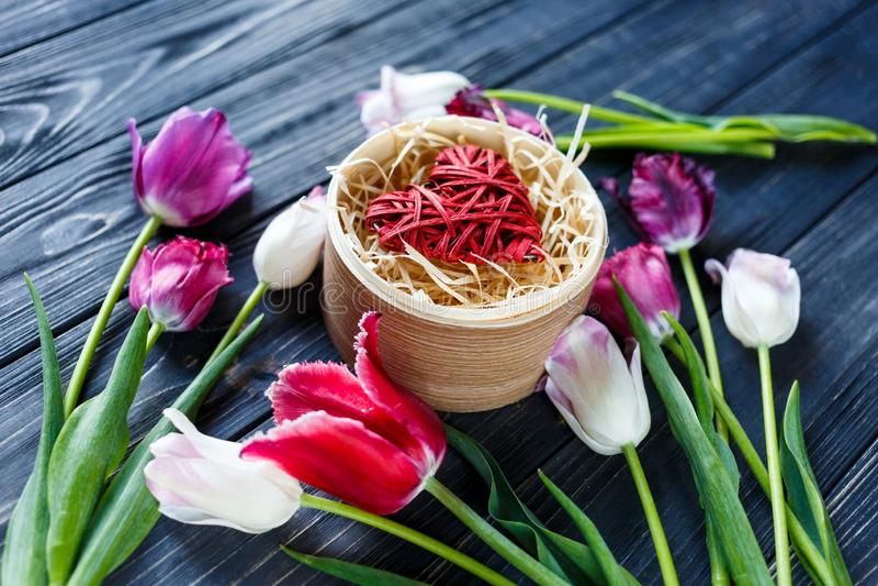 Tulipanes violetas rosados hermosos coloridos y corazón rojo en caja de madera redonda en la tabla de madera gris Tarjetas del dí fotos de archivo