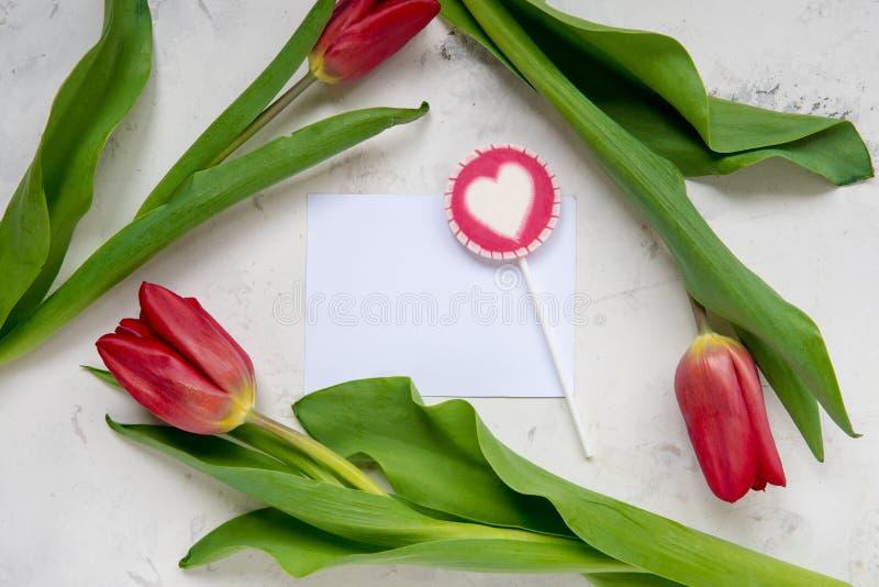 Tulipanes y piruleta rojos con el espacio de la copia para su texto fotografía de archivo libre de regalías