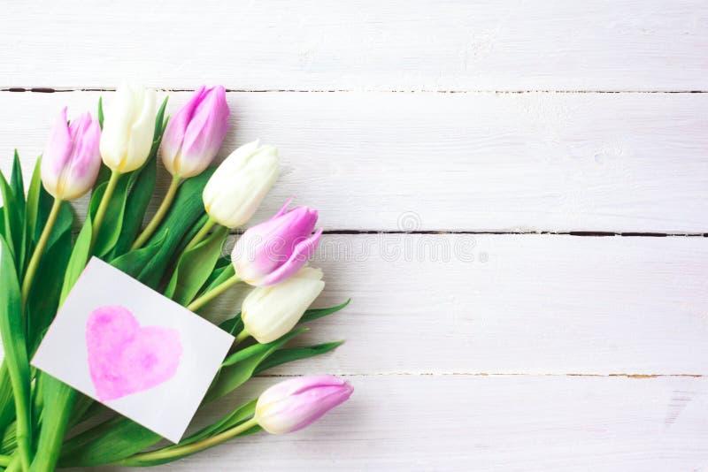 Tulipani bianchi e porpora su un fondo di legno bianco Sorgente Giorno internazionale del ` s delle donne Giorno del `s del bigli immagine stock