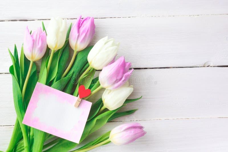 Tulipani bianchi e porpora su un fondo di legno bianco Sorgente Giorno internazionale del ` s delle donne Giorno del `s del bigli fotografie stock