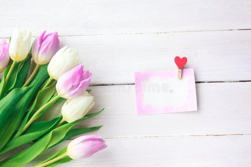 Tulipani bianchi e porpora su un fondo di legno bianco Sorgente Giorno internazionale del ` s delle donne Giorno del `s del bigli fotografia stock