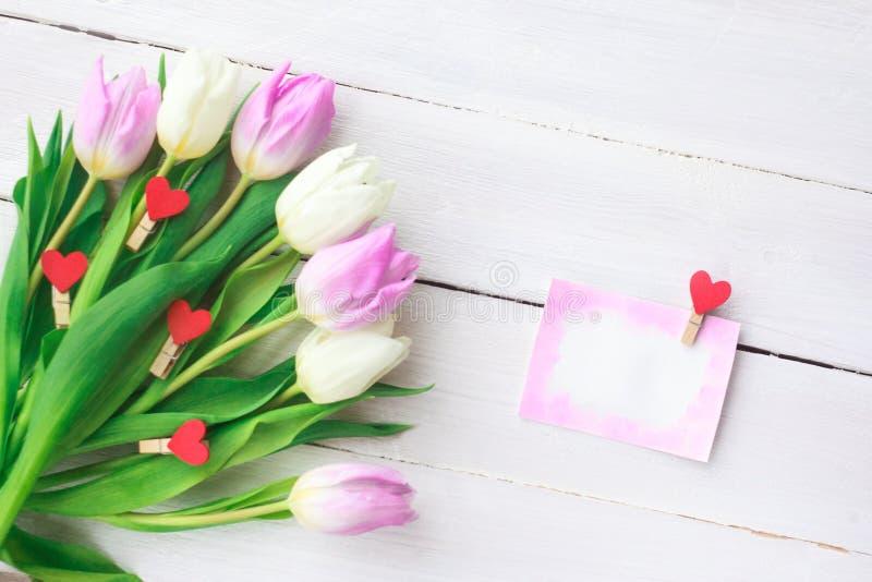 Tulipani bianchi e porpora su un fondo di legno bianco Sorgente Giorno internazionale del ` s delle donne Giorno del `s del bigli immagine stock libera da diritti