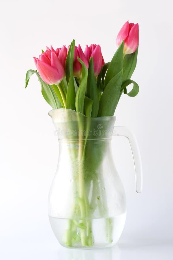 Tulipani in brocca immagine stock libera da diritti