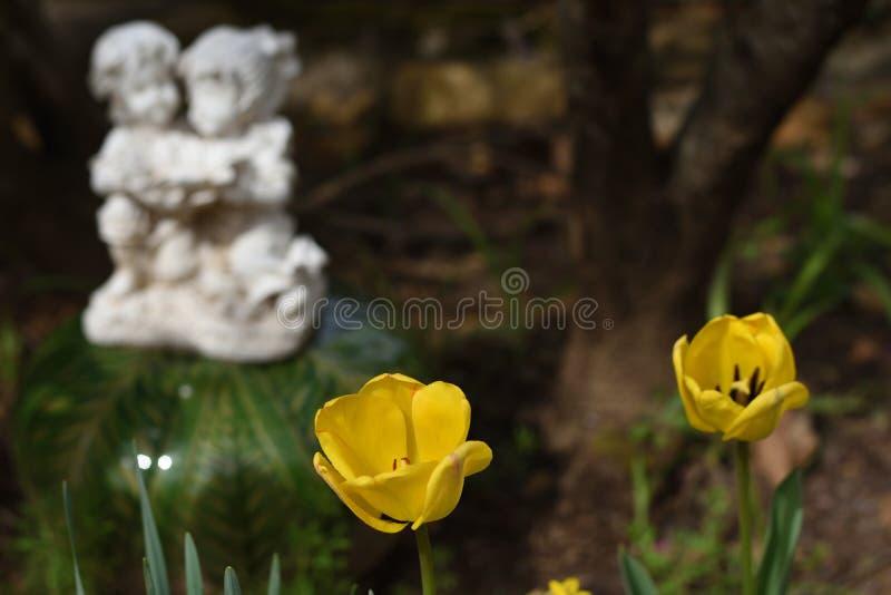 Tulipani del ` di Zen Garden del ` in fioritura con una statua fotografie stock libere da diritti