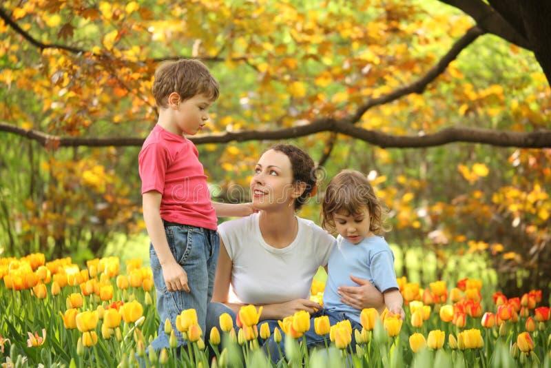 tulipani della madre del giardino dei bambini