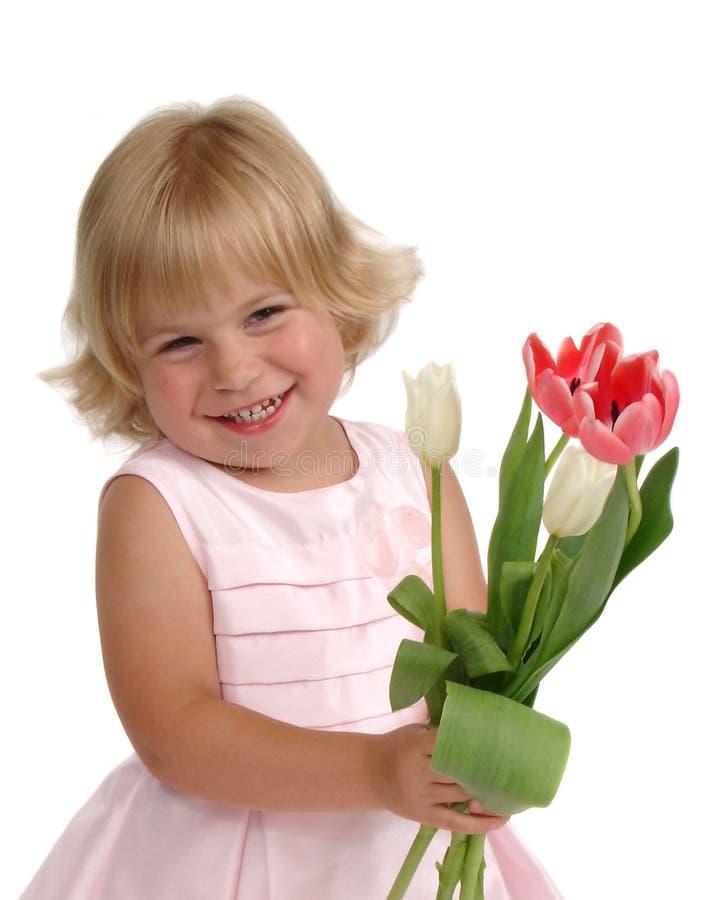 Tulipani dentellare del vestito fotografia stock