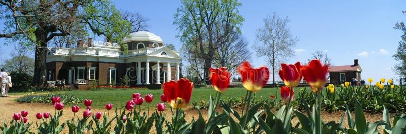 Tulipani e Monticello in primavera immagini stock libere da diritti