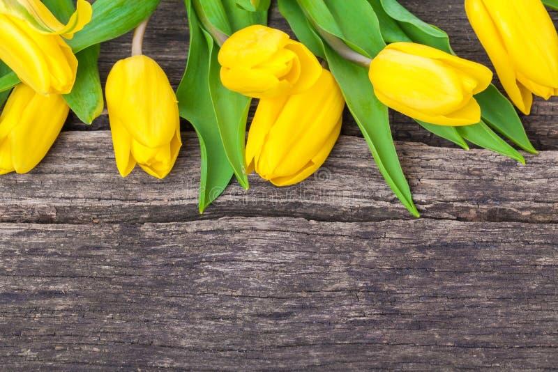 Tulipani, fondo di legno fotografia stock