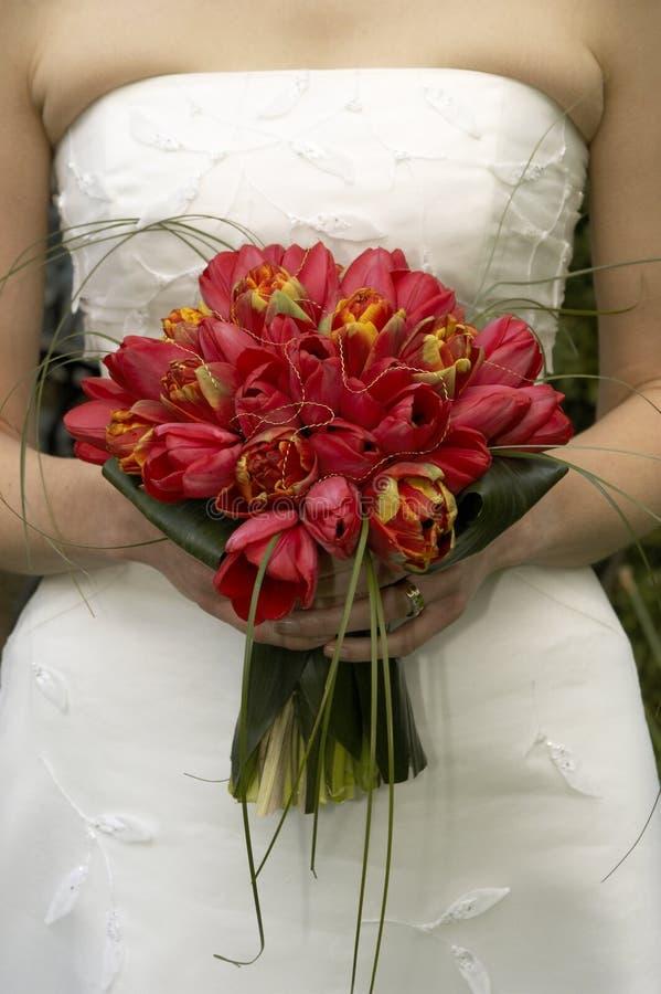 Tulipani nuziali del mazzo fotografia stock