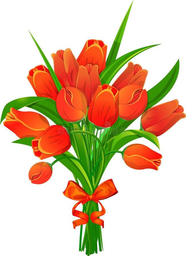 Tulipani rossi con il nastro fotografie stock