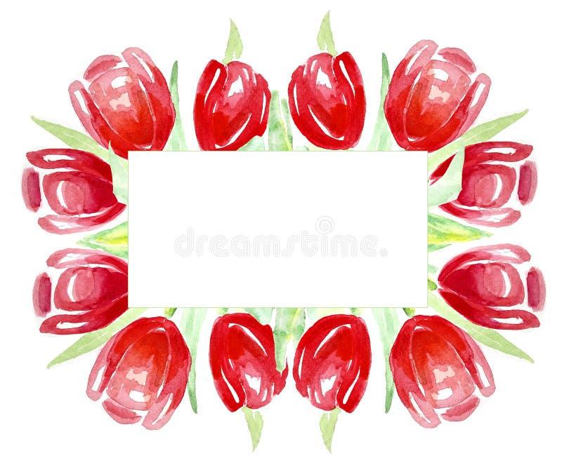 Tulipani rossi della pagina per gli inviti, etichette, carte watercolor illustrazione di stock
