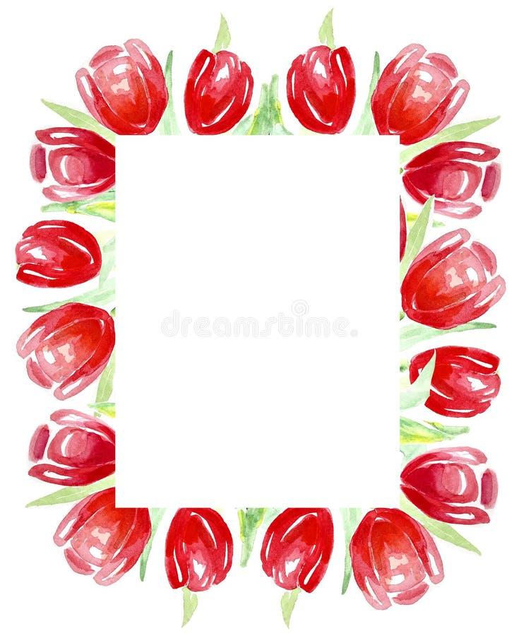 Tulipani rossi della pagina per gli inviti, etichette, carte watercolor illustrazione vettoriale