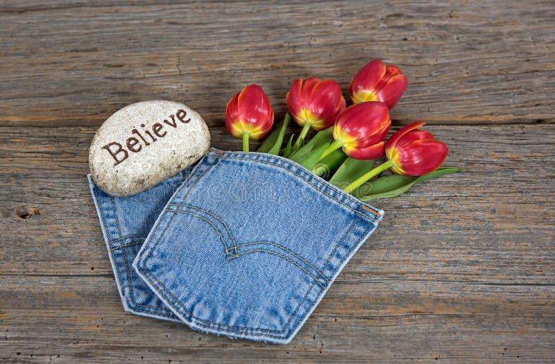Download Tulipani Rossi In Tasca Del Denim Fotografia Stock - Immagine di pietra, credi: 55357400