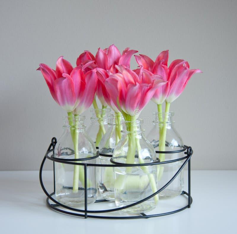 Tulipani rossi in vasi di vetro fotografia stock libera da diritti