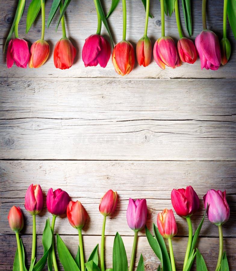 Tulipani su legno d'annata fotografia stock