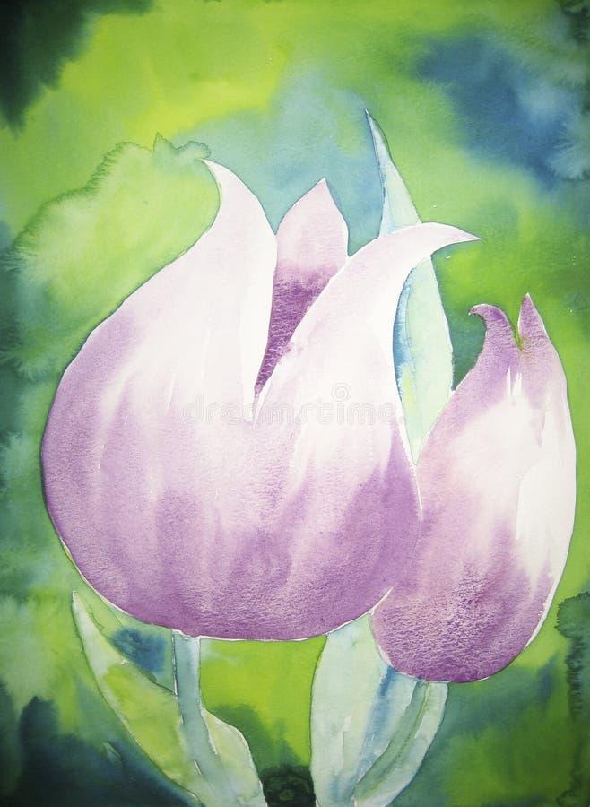 Tulipani viola illustrazione di stock