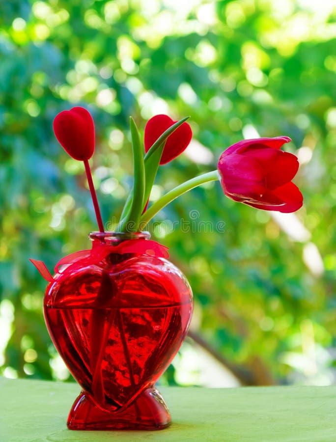 Tulipano con cuore nel vaso fotografia stock libera da diritti