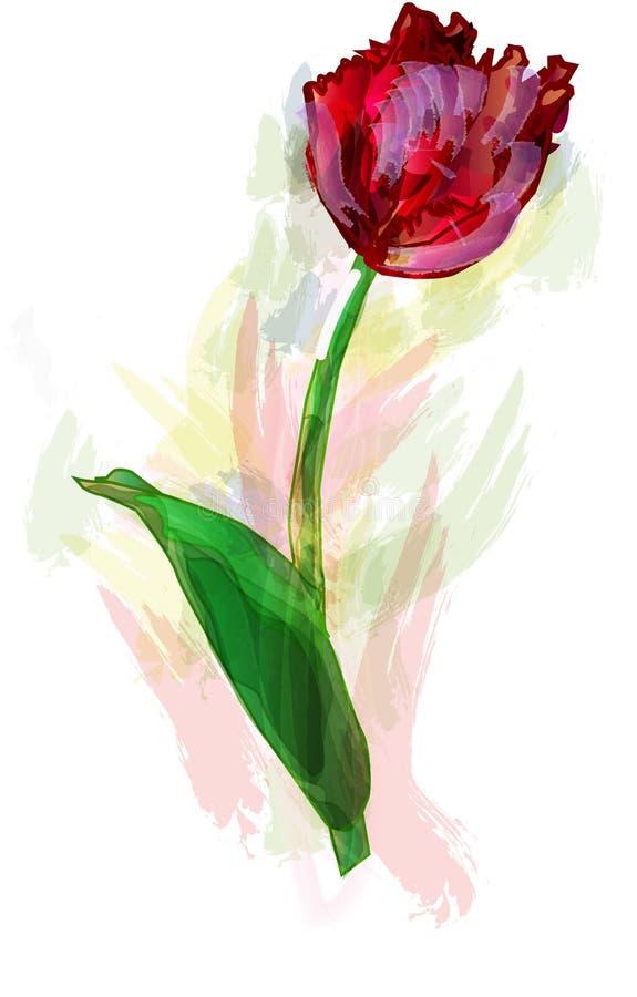 Tulipanowe akwarele ilustracji