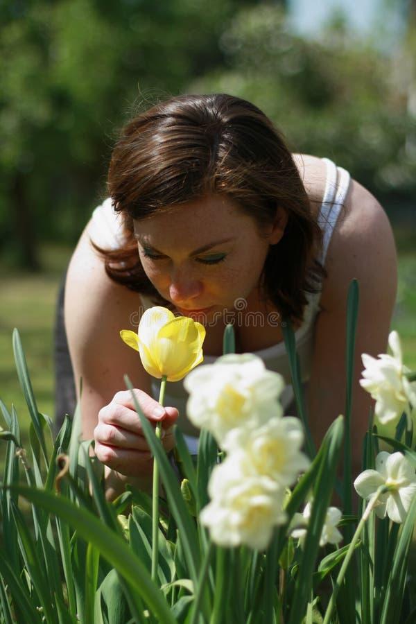 tulipanowe kobiety zdjęcia royalty free