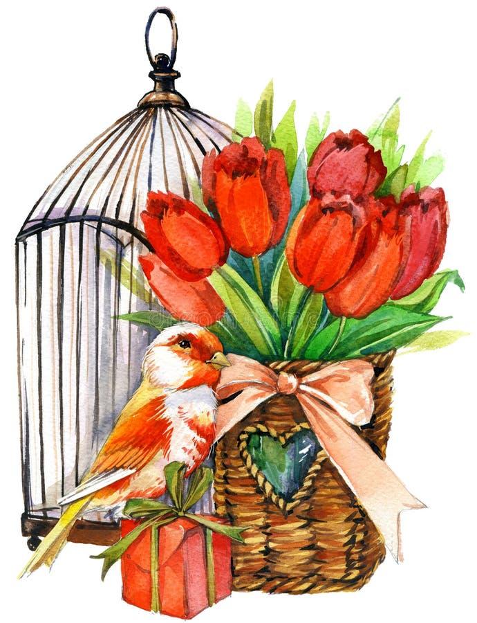 Tulipanowi kwiaty, kanarowy ptak i dekoracyjny birdcage, akwarela royalty ilustracja